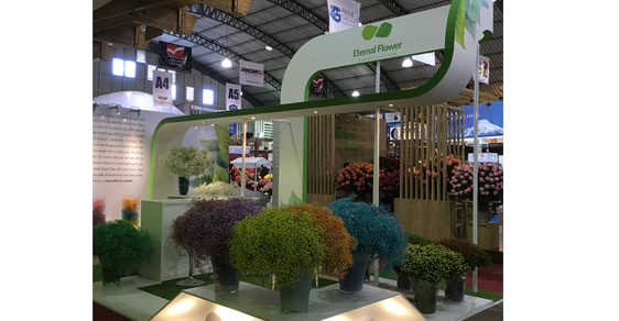 Success at Agriflor 2016!